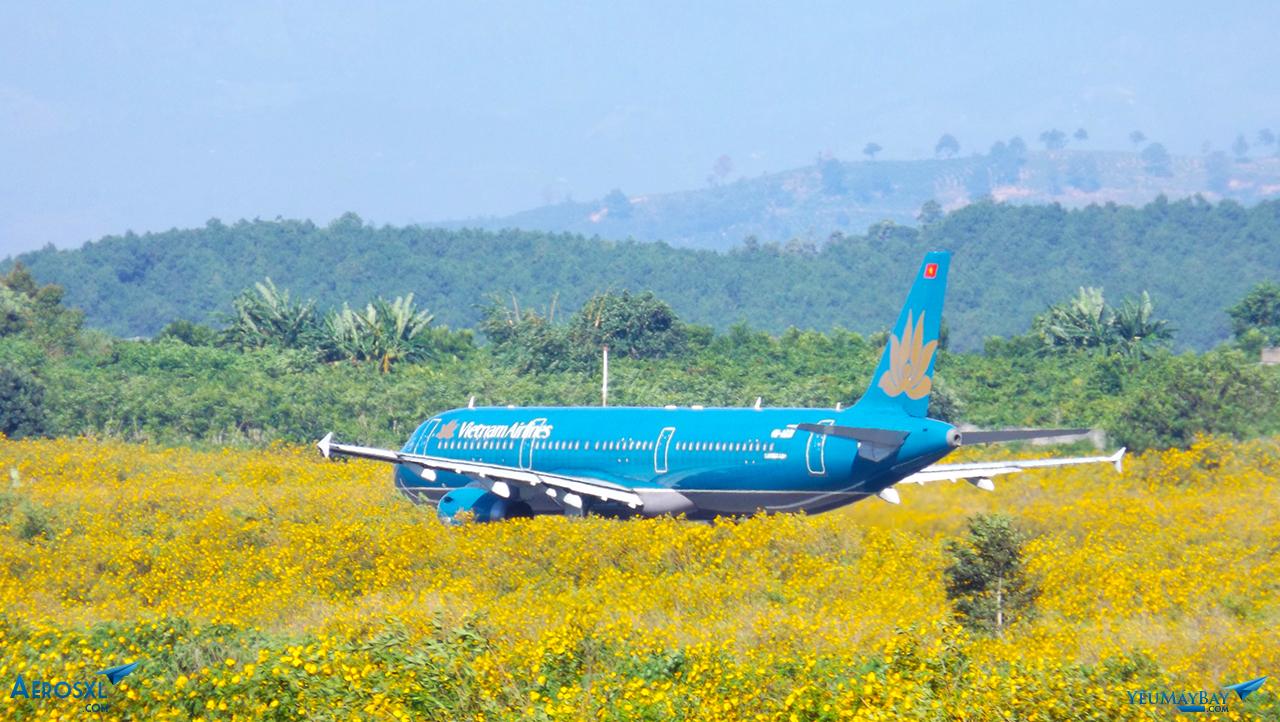 """Vietnam Airlines """"nằm"""" trong vườn hoa - ảnh: Tuấn Đỗ"""