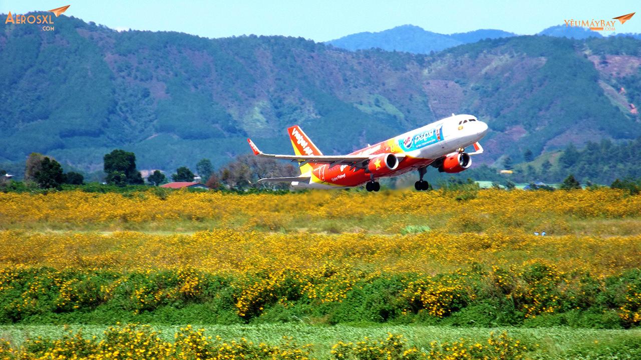 Máy bay VietJet Air cất cánh từ đồng hoa dã quỳ. Ảnh: Tuấn Đỗ.
